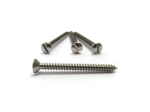 Neck Mounting screws, Slot head Stainless Steel (x 4)